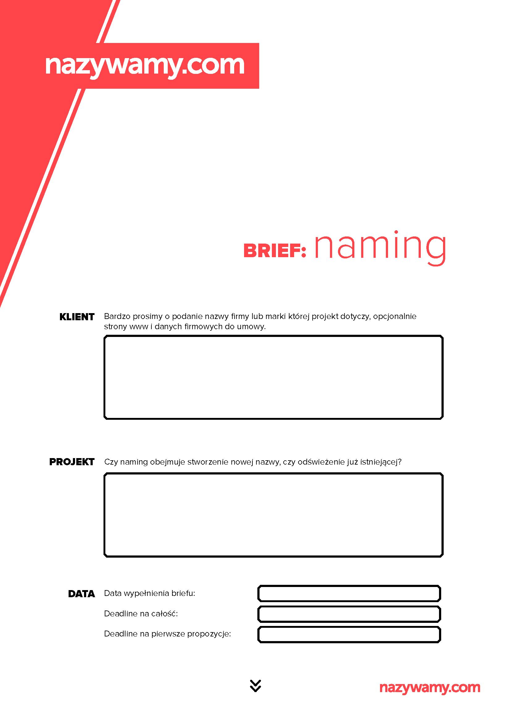 Nazywamy_Brief_Naming