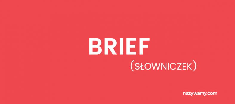 Brief – definicja
